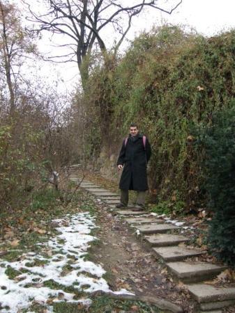 เนินเขาและอนุสาวรีย์เกลเลิร์ท: Pujant per la colina Gellert. Havia nevat...