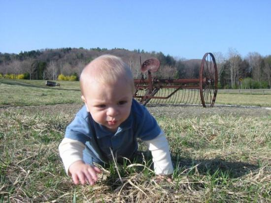 Guilford, VT: King of Babies seeks ample farmland