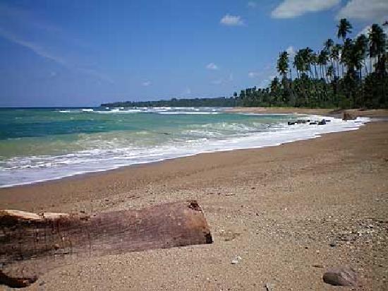 Amarald Lodge: Beach