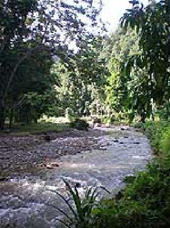 Amarald Lodge: River