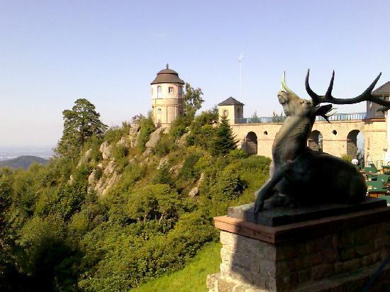 Schlosshotel Buehlerhoehe: Hirsch