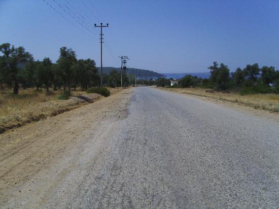 Mandalya Gardens: road to hotel