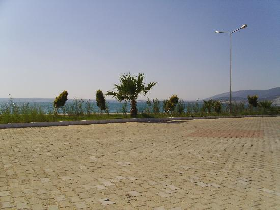 Mandalya Gardens: this what you see on your left and right walking down to beach