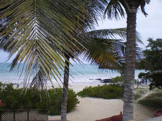 Redmangrove: La nostra camera dava sulla spiaggia
