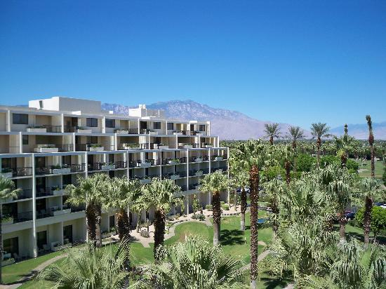 JW Marriott Desert Springs Resort & Spa: View from balcony