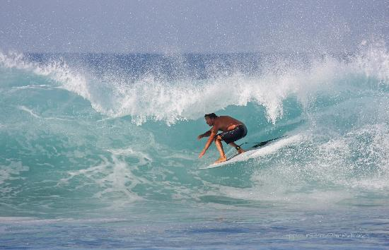 San Pedrito Surf Hotel : best ever surf at the point, short walk