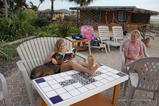 San Pedrito Surf Hotel : Always a cuddly dog next to you