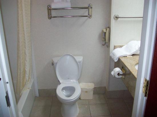 Homestead Apart-Hotel: Bathroom pt. 2