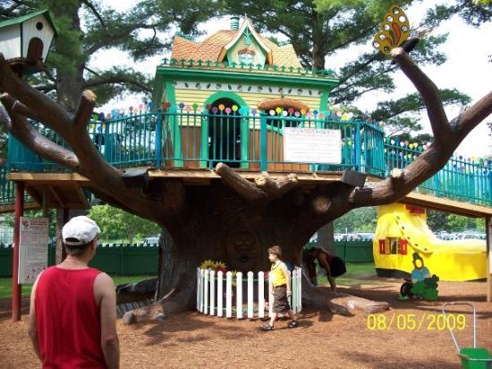 North Conway Nh The Treehouse At Storyland