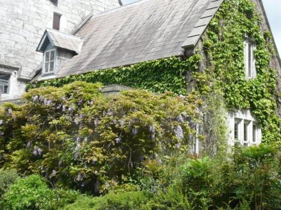University College Cork (UCC): campus