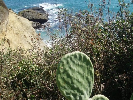 Laguna Hills, Californien: Laguna Beach