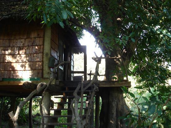 andBeyond Lake Manyara Tree Lodge: Our Treehouse