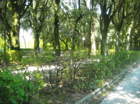 Giardino Frontone : Viale dei Giardini del Frontone, Perugia