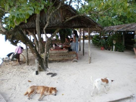 Nusa Island Retreat Bar and Restaurant Area