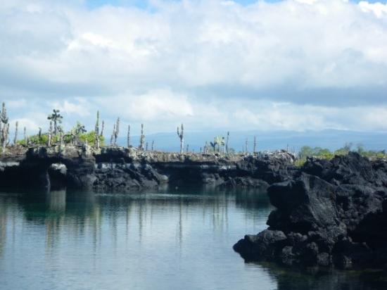 """Santa Cruz, Ecuador: Cabo Rosa - """"the caves"""" where we snorkeled."""