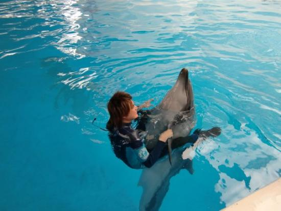"""Hualien FarGlory Hotel: ma dear """"dancing"""" with the dolphin :D"""