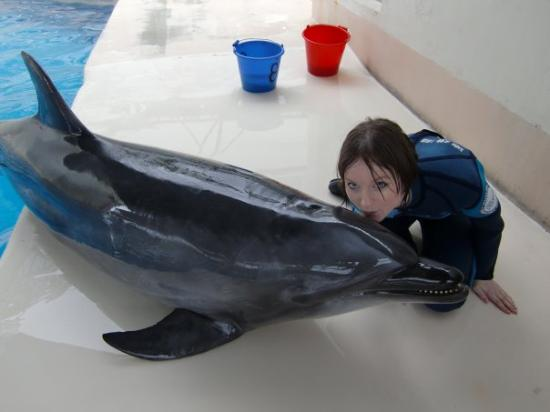 Hualien FarGlory Hotel: kissing the dolphin <3