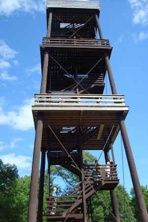 Fish Creek, WI: We climbed to the top of Eagle Tower in Peninsula State Park