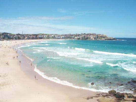 Bondi Vacations
