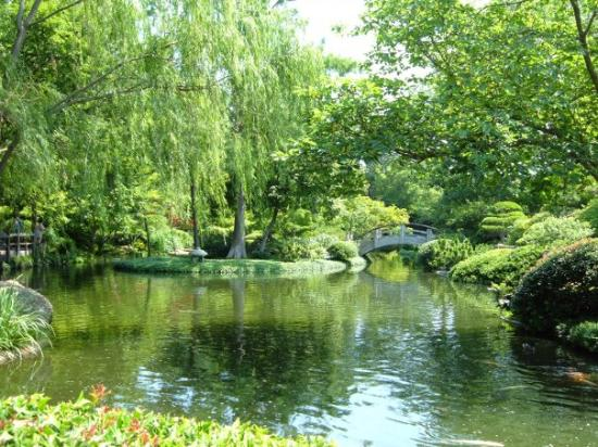 Ft Worth Japanese Gardens Picture Of Fort Worth Botanic Garden Fort Worth Tripadvisor