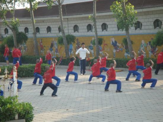 Shaolin Temple: 架势很足