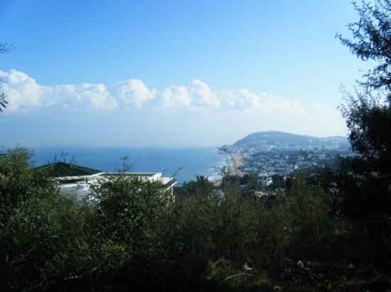 라 마르사 사진