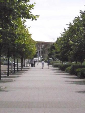 Wales Millennium Centre: View of the Wales Millenium Centre