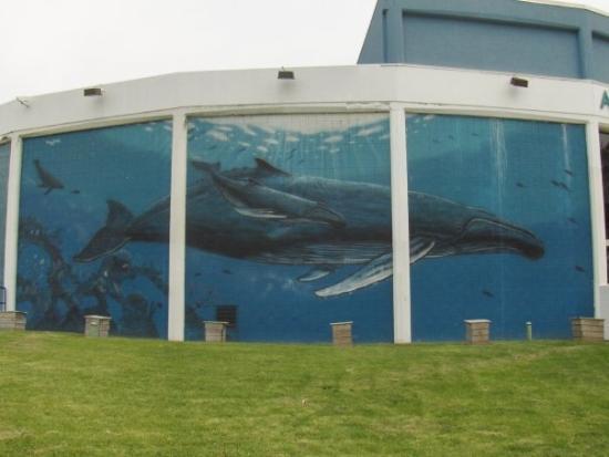 Niagara Aquarium Niagara Falls New York Picture Of