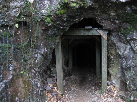 Adventure Mining Company