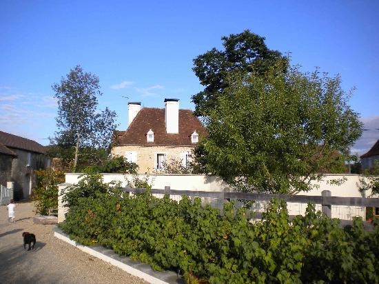 La Maison de la Fontaine - Driveway
