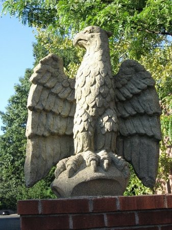 West Hartford, CT: Armory eagle