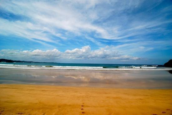 Las Baulas National Marine Park : DSC_0070