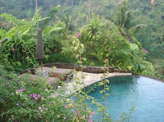 The Royal Pita Maha: ヴィラ内のプール