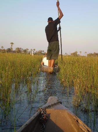 Livingstone Trails: Delta dell'Okavango