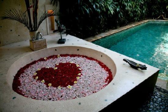 Jamahal Private Resort & SPA : la piscina e la vasca della suite Alamanda