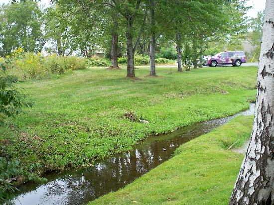 BEST WESTERN Dunkirk & Fredonia Inn: Front yard with small brook