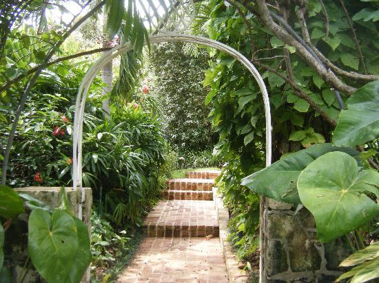 Round Hill Hotel & Villas: Walkway to Cottage 23