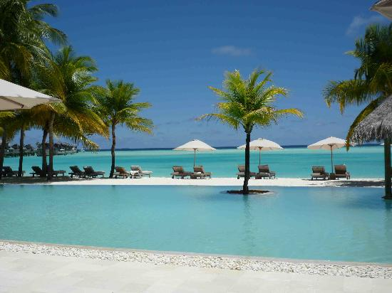 Gili Lankanfushi Maldives: View from the pool