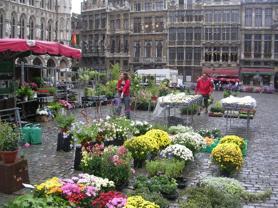 The Dominican: Grand Place