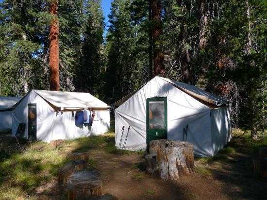 Yosemite High Sierra Camps : Tents at Merced Lake Camp