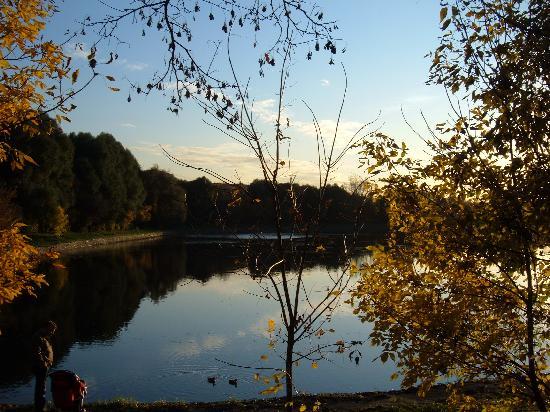 Hotel Moskvich : Pond in primity