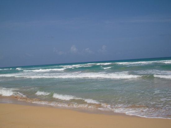 Excellence Punta Cana : the beach