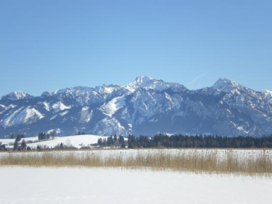 Hopfen am See, Γερμανία: Hopfensee