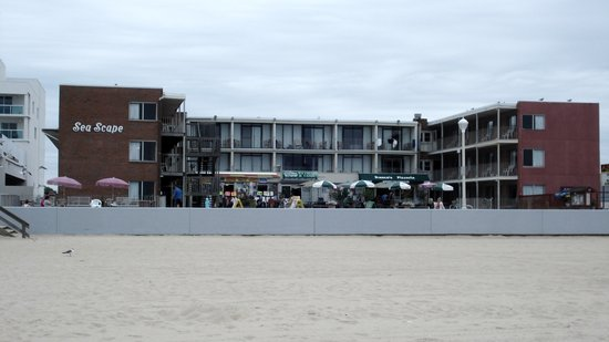 Sea Scape Motel: The hotel from the beach