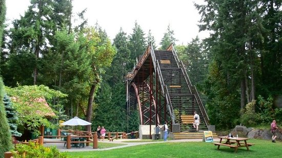 นาไนโม, แคนาดา: the Bridge at the Wild Play Zip Line and Bungee Jump in Nanaimo