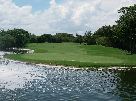 Playacar Golf Club : 11th Green - Par 5