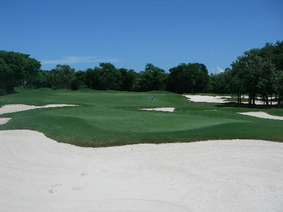 Playacar Golf Club: 16th Green