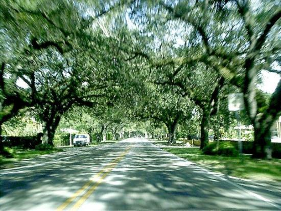Coral Gables Photo