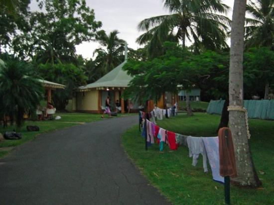 Koala Beach Resort: Our home for the week - one of the best hostels we stayed in Oz