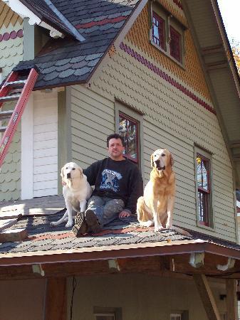 Nina's Pizzeria: dogs on roof